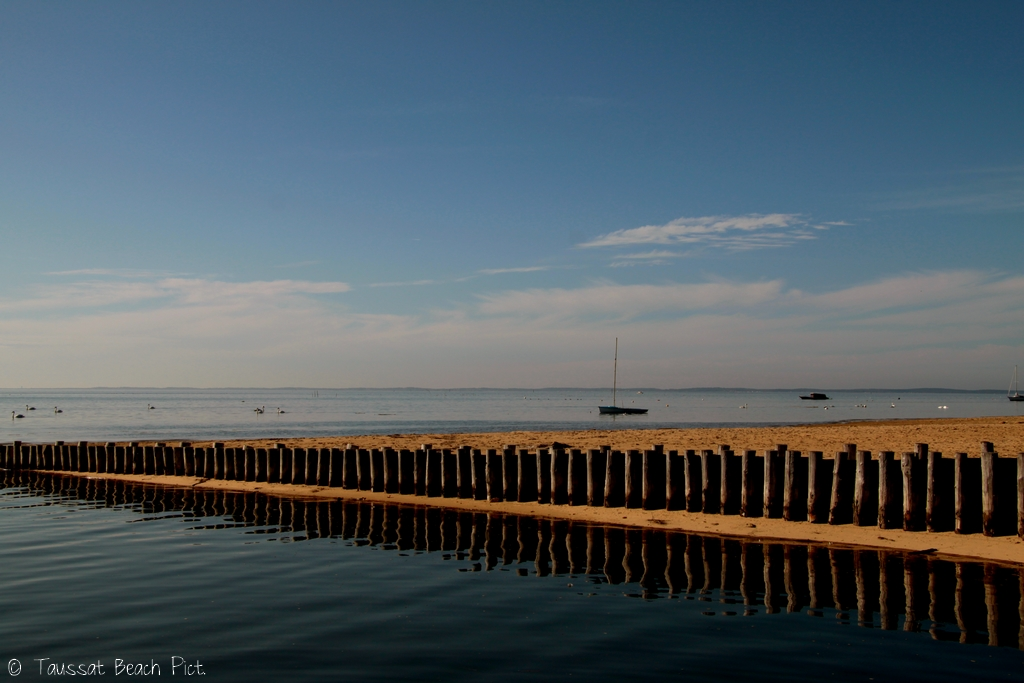 lundi novembre belle météo bassin d'arcachon lanton taussat plage marée haute cygnes oiseaux