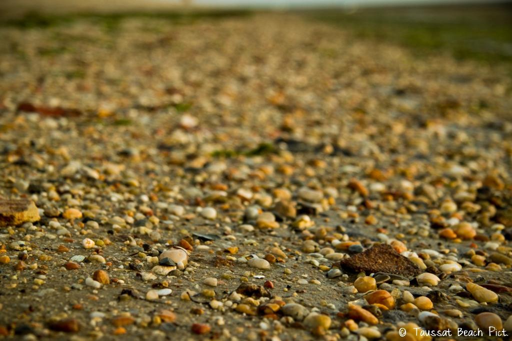 plage taussat lanton sable port ostréicole cntc