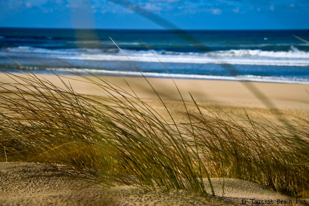 dunes océan cap ferret grand crohot surf