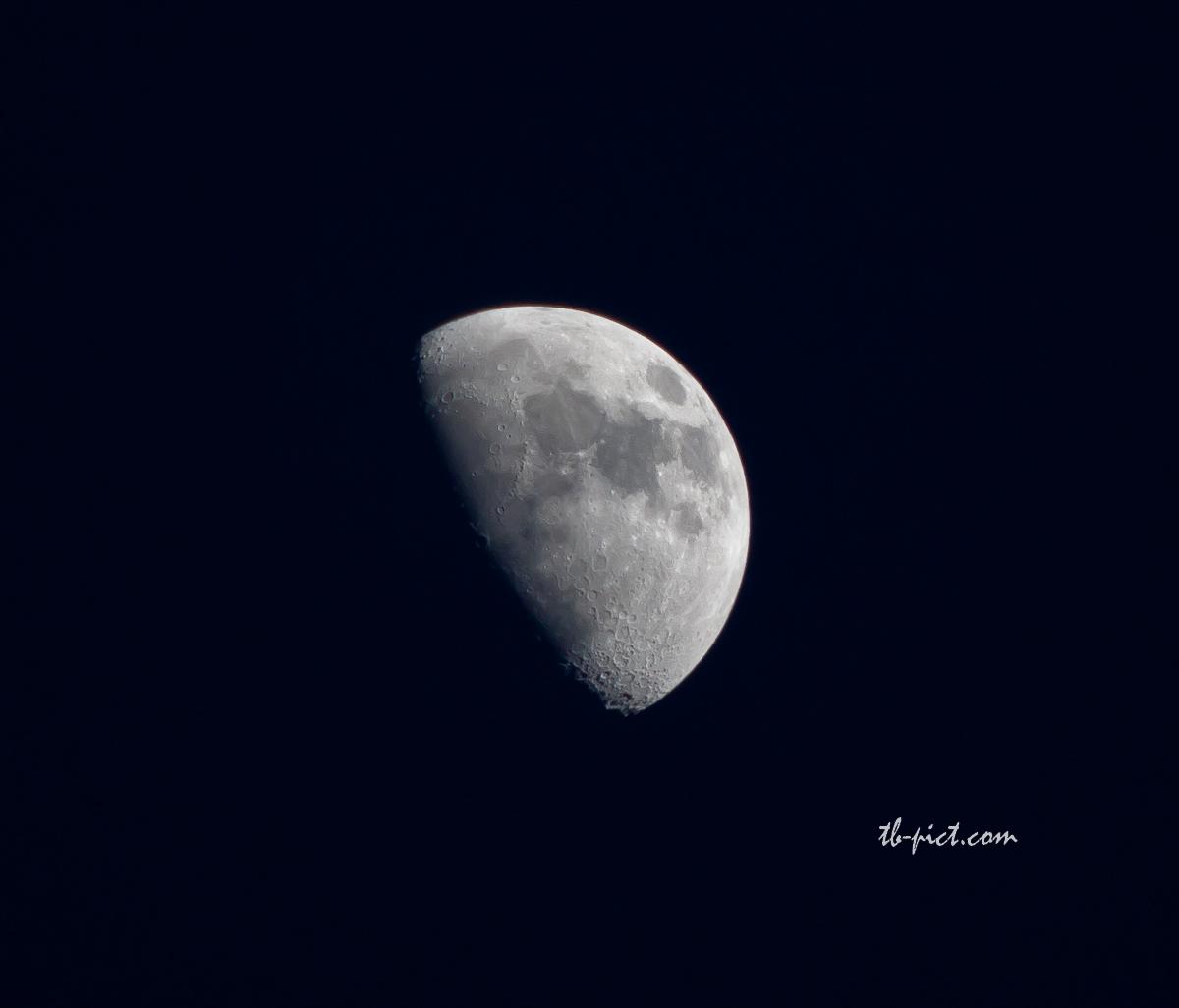 lune, nuit, pleine, moon
