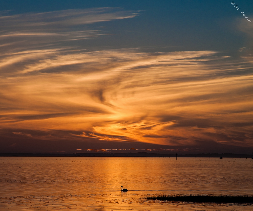 sunset taussat beach bassin d'arcachon