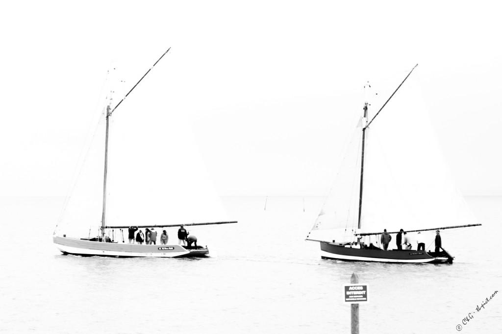 Bacs à voile - Bassin d'Arcachona